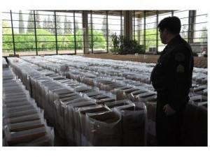 urnas y veda electoral
